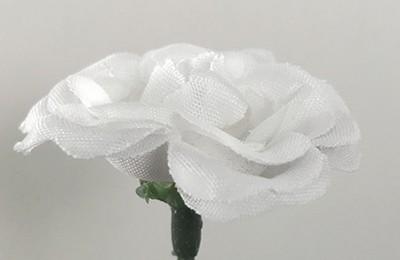 Miniruusu-kukkapää, valkoinen