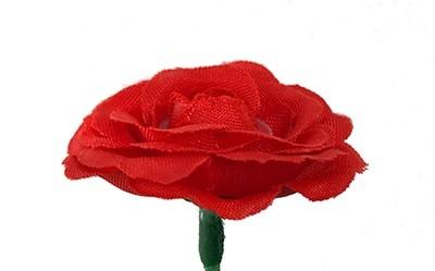 Miniruusu-kukkapää, punainen