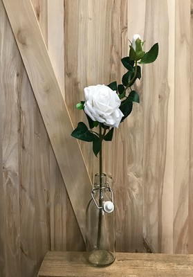 Juhannusruusu silkkikukka, valkoinen