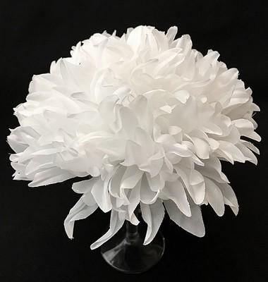 Krysanteemi-kukkapää, valkoinen