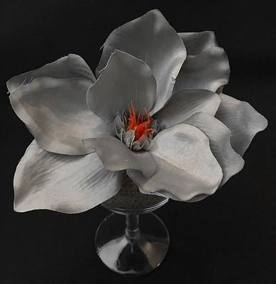 Magnolia-kukkapää, harmaa