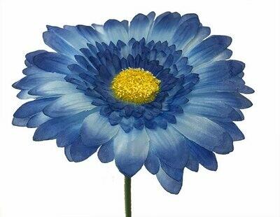 Gerbera sininen