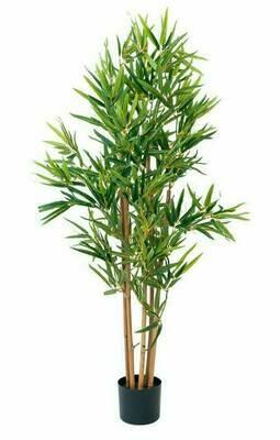 Bambu tekokasvi ruukussa 120cm