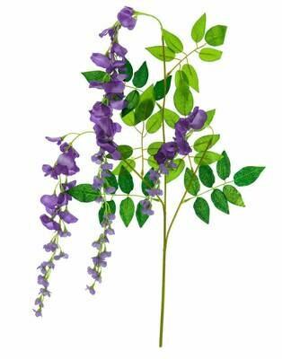 Wisterian oksa violetti EUROPALMS