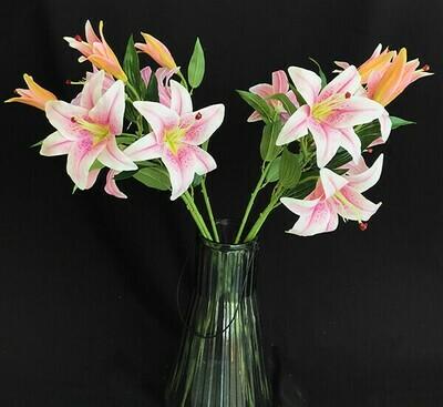 Upea lilja 3-kukkainen, vaalea lila