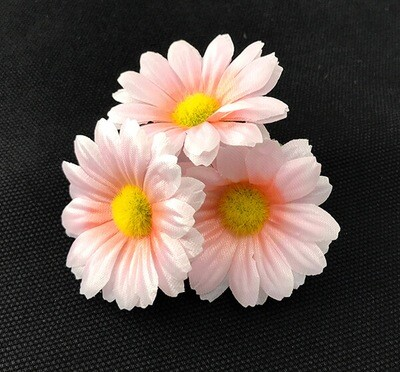 Kamomilla-kukkapää, rosa
