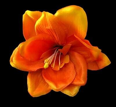 Amaryllis-kukkapää, oranssi