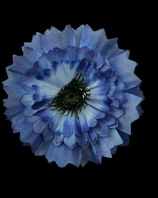 Ruiskaunokki-kukkapää, tumma sininen