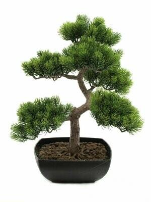 Bonsai tekopuu 50cm