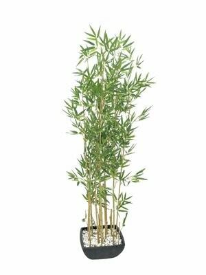 Bambu tekokasvi koristeruukussa 150cm