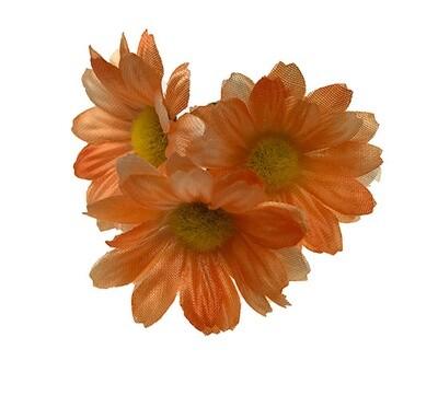 Kamomilla-kukkapää, oranssi