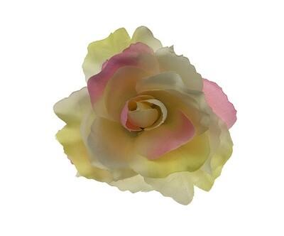 Ruusu-kukkapää, kerma/pinkki
