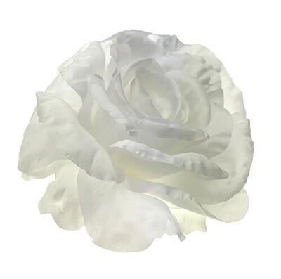 Iso ruusu-kukkapää, valkoinen