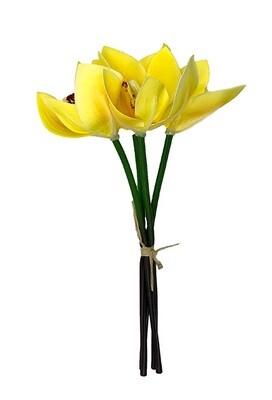 Orkideakimppu, keltainen