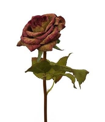 Ruusu (korkkia), vaaleanpunainen