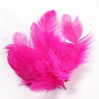 Pinkit höyhenet
