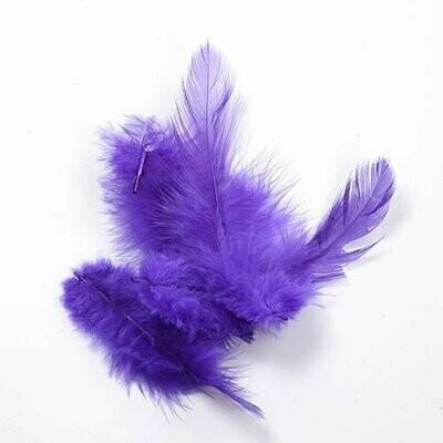 Violetit höyhenet