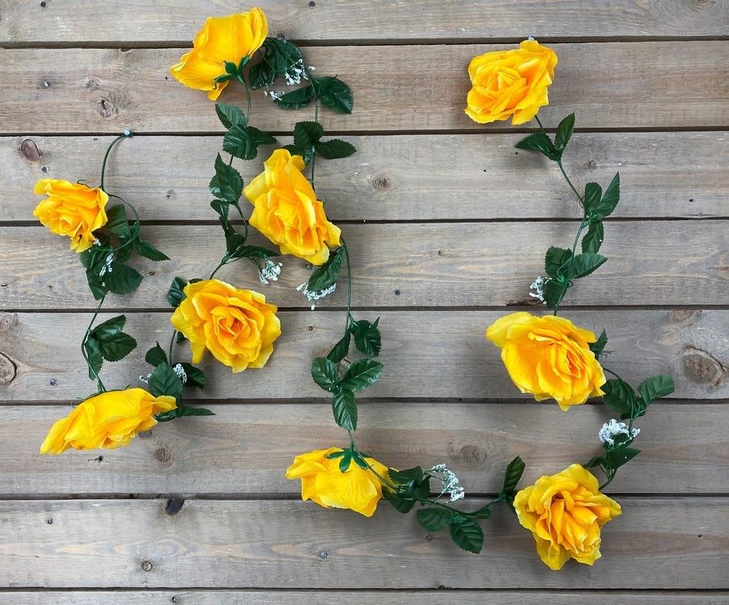 Ruusuköynnös, keltainen