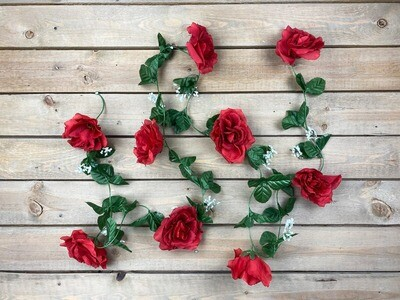 Ruusuköynnös, punainen