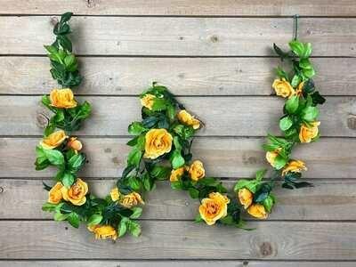 Ruusuköynnös, keltaoranssi