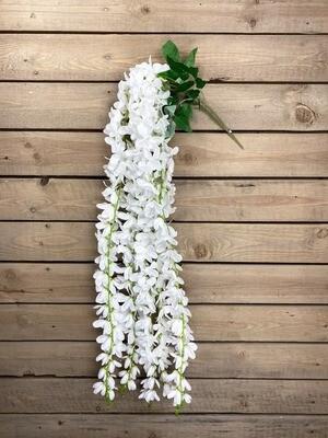 Orkidea-oksa, valkoinen