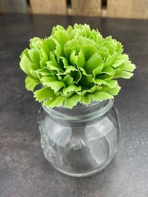 Neilikka kukkapää, vihreä