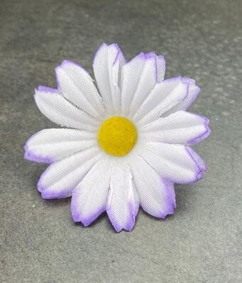 Pieni päivänkakkara kukkapää, vaaleanvioletti