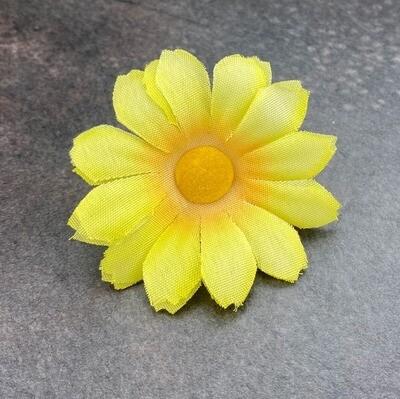 Päivänkakkara kukkapää, keltainen