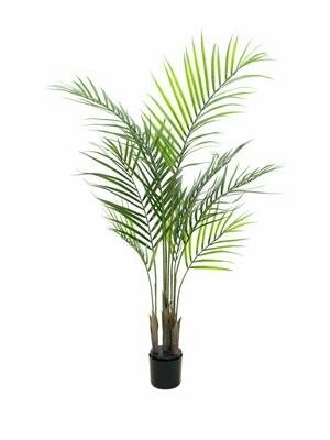 Tekokasvi Areca-palmu 125cm