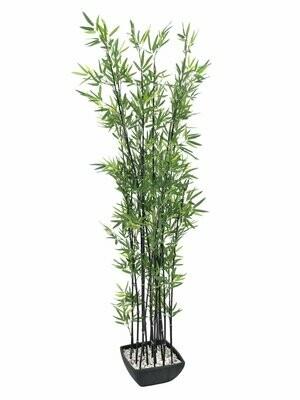 Bambu tekokasvi koristeruukussa 180cm