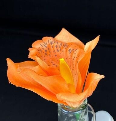Orkidea kukkaosa, oranssi