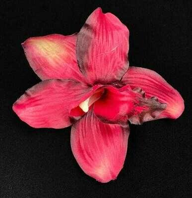 Orkidea kukkapää, viininpunainen