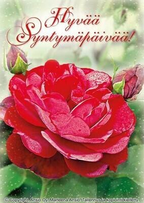 Kortti Marleena Ansio: syntymäpäiväonnittelut