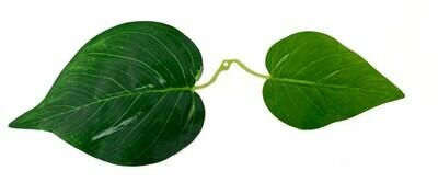 Vihreä lehtioksa 10kpl