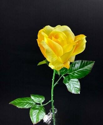 Keltainen ruusu