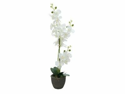Valkoinen orkidea tekokasvi ruukussa 85cm