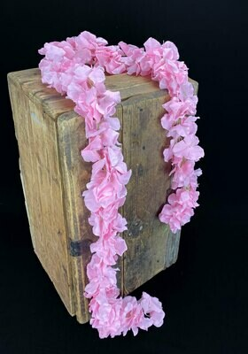Hortensiaköynnös 1,7m, vaaleanpunainen
