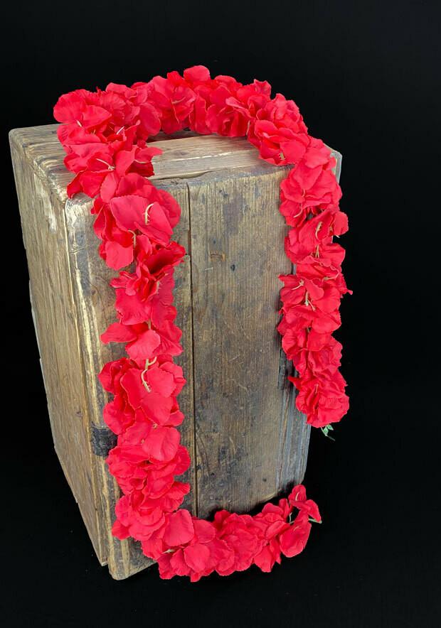 Hortensiaköynnös 1,7m, punainen