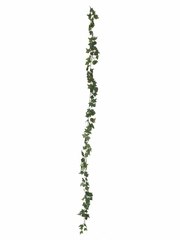 Murattiköynnös vihreä 180cm