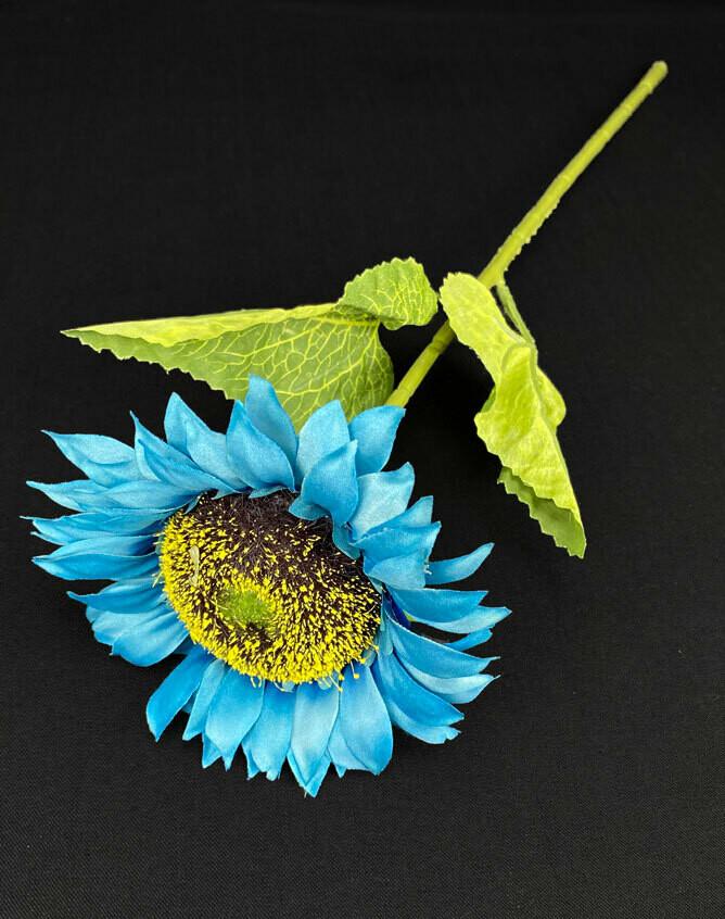 Auringonkukka, sininen