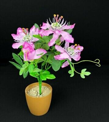 Passionflower kimppu, vaaleanpunainen