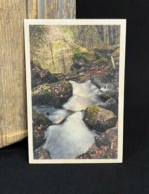Puulle painettu kortti; luonto