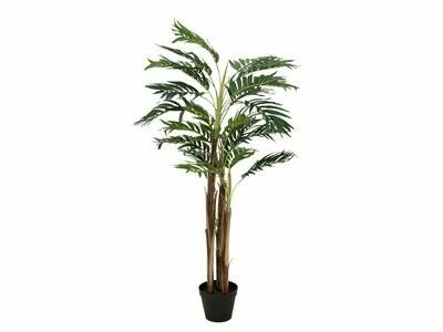 Areca -palmu ruukussa 110cm