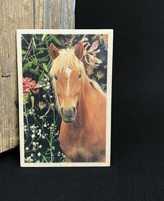 Puulle painettu kortti; suomenhevonen