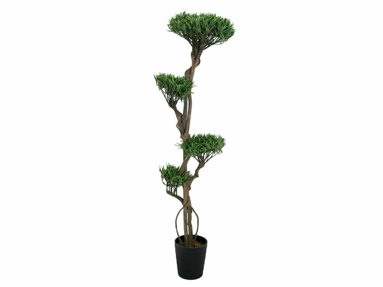 Bonsai tekokasvi ruukussa 170cm