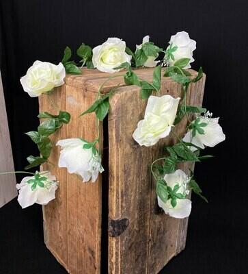 Ruusuköynnös, vihertävä