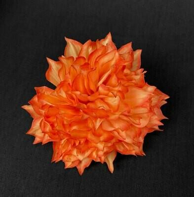 Daalia kukkapää, oranssi