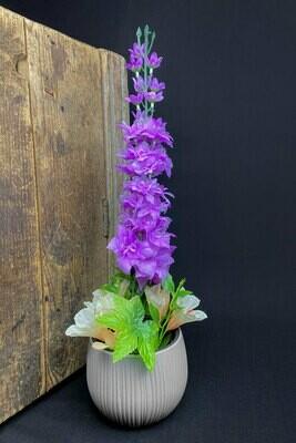 Ritarinkannus ruukussa, violetti