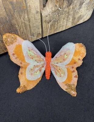 Klipsiperhonen, oranssi