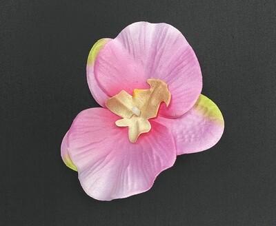 Orkidea kukkaosa, vaaleanpunainen